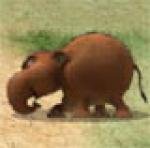 เกมส์ต่อสู้สงครามศึกชนช้าง, เกมส์ศึกชนช้างก้านกล้วย , เกมส์ Khan Kluay Kids War