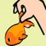 เกมส์ช่วยชีวิตปลาทอง