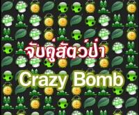 Crazy bomb เกมส์จับคู่สัตว์ป่า